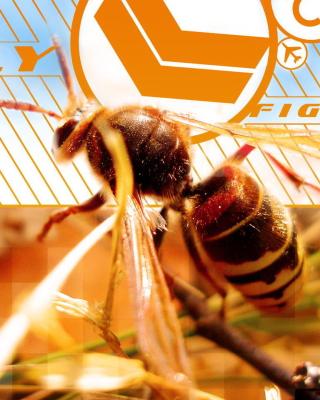 Bee - Obrázkek zdarma pro iPhone 5C