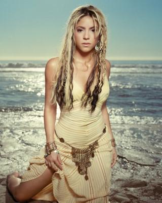 Shakira - Obrázkek zdarma pro Nokia C1-01