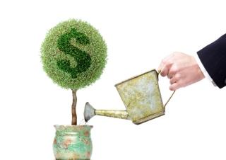 The Financial Crisis - Money Tree - Obrázkek zdarma pro 1920x1080