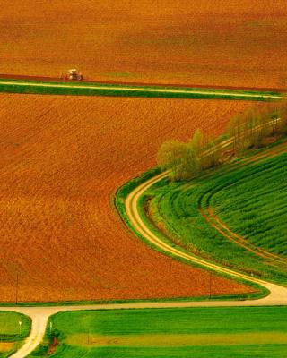 Harvest Field - Obrázkek zdarma pro 480x854