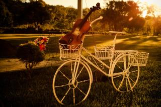 Violin - Obrázkek zdarma pro Fullscreen Desktop 1280x1024