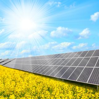 Solar panels on Field - Obrázkek zdarma pro iPad 3