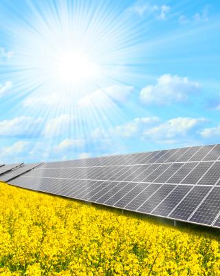 Solar panels on Field - Obrázkek zdarma pro iPhone 5