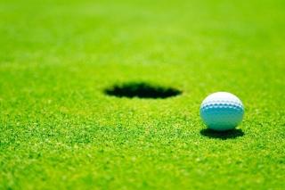 Golf Ball - Obrázkek zdarma pro LG Optimus M