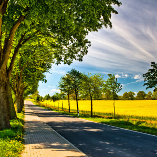 Ideal avenue for cars - Obrázkek zdarma pro iPad Air