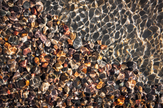 Free Pebbles And Water Reflections Picture for Android, iPhone and iPad