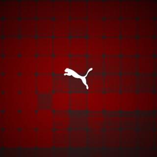 Puma Logo - Obrázkek zdarma pro iPad 3