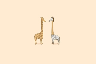 Giraffe-Zebra Wallpaper for Android, iPhone and iPad
