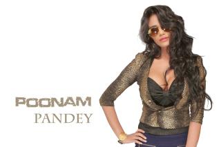 Poonam Pandey - Obrázkek zdarma pro HTC One X