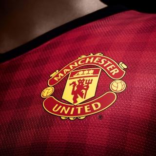 Manchester United Logo - Obrázkek zdarma pro 320x320