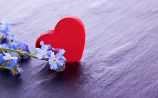 Free Love And Blue Flowers Picture for Android, iPhone and iPad