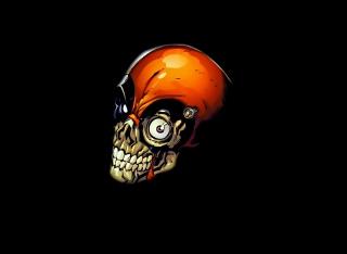 Skull Tech - Obrázkek zdarma pro 1024x768