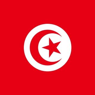 Flag of Tunisia - Obrázkek zdarma pro iPad mini 2