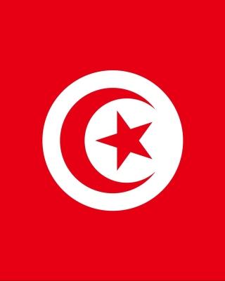 Flag of Tunisia - Obrázkek zdarma pro Nokia C5-06
