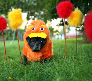 Carnival Dog - Obrázkek zdarma pro iPad