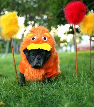 Carnival Dog - Obrázkek zdarma pro Nokia Asha 503