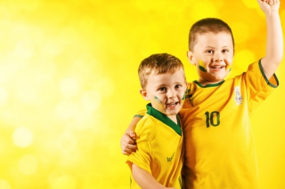 Brasil FIFA Football Fans Picture for Android, iPhone and iPad
