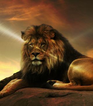 Lion - Obrázkek zdarma pro Nokia C2-05