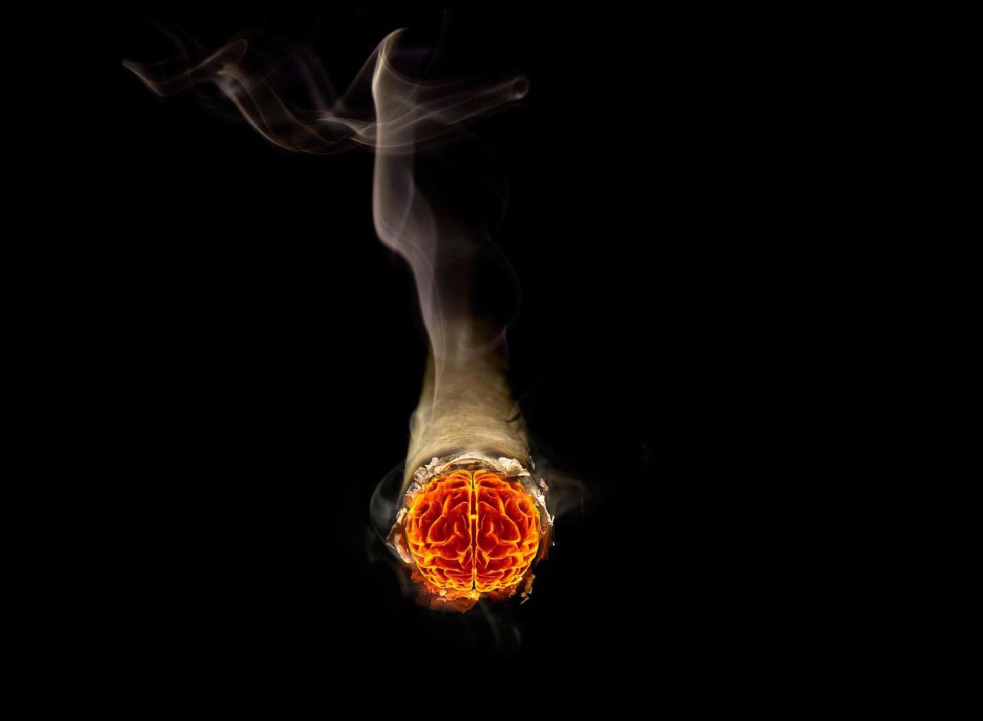 Дым в руках  № 3136135  скачать