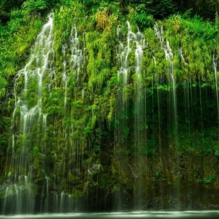 Waterfll in National Park - Obrázkek zdarma pro 320x320