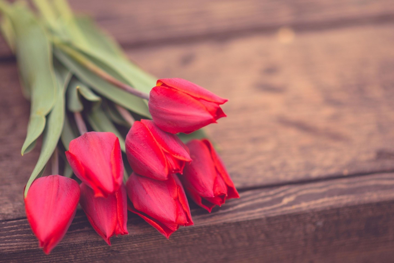 тюльпаны ваза море  № 1012888  скачать