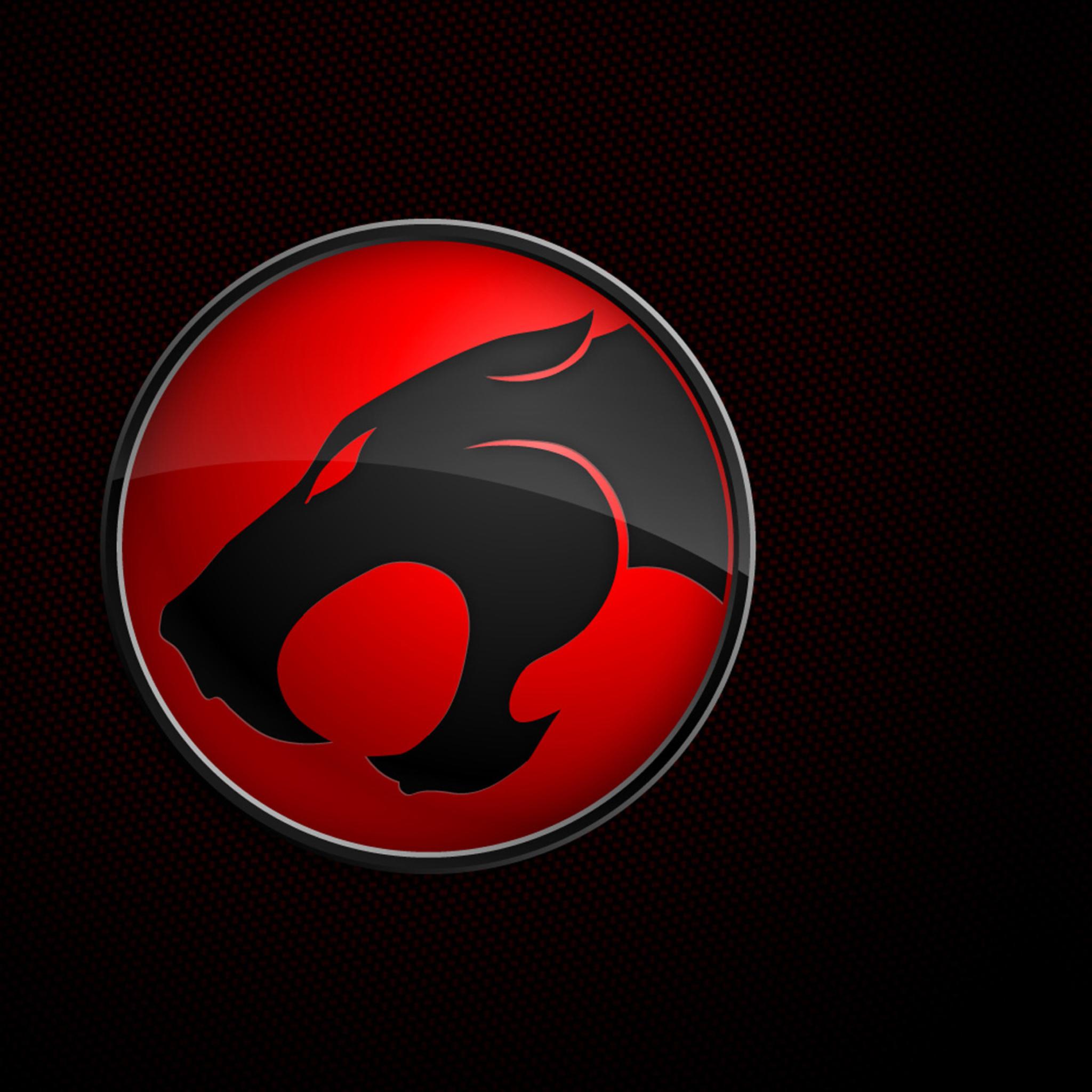 Thundercats Logo Wallpaper 61 Images: Thundercats HD Wallpaper For 2048x2048