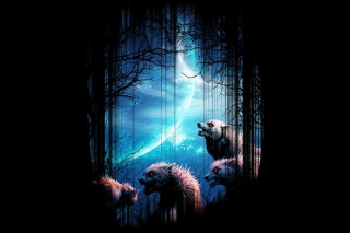 Wolverines At Night Background for Android, iPhone and iPad