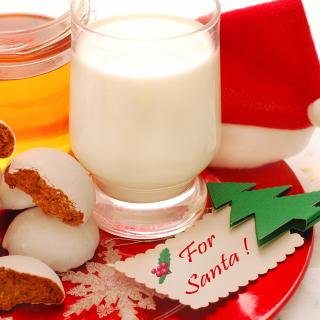 Gift for Santa - Obrázkek zdarma pro 1024x1024