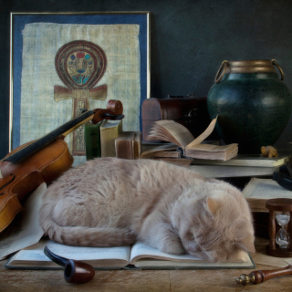 Sleeping Cat - Obrázkek zdarma pro iPad mini