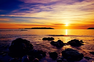 Golden Sunrise Beach Picture for Android, iPhone and iPad