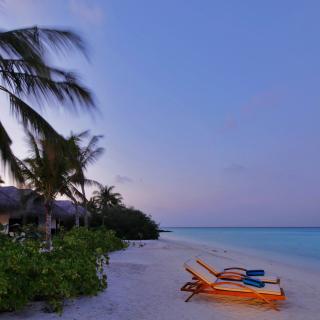 Exotic Beach Rosalie Bay, Dominica - Obrázkek zdarma pro 1024x1024