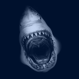 Terrifying Mouth of Shark - Obrázkek zdarma pro iPad Air