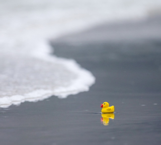 Yellow Rubber Duck At Beach - Obrázkek zdarma pro iPad mini