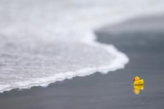 Yellow Rubber Duck At Beach - Obrázkek zdarma pro 1024x600