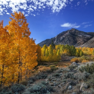 Wonderful mountain landscape - Obrázkek zdarma pro iPad
