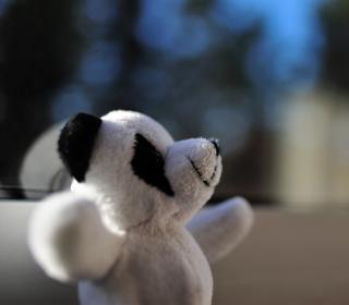 Happy Teddy Wants A Hug - Obrázkek zdarma pro 1024x1024