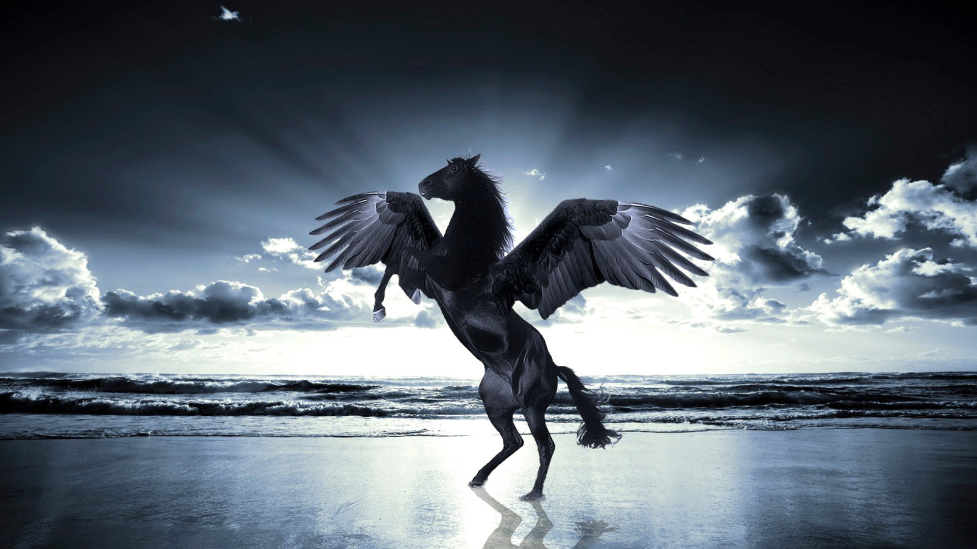 Pegasus Wallpaper For Desktop 1920x1080 Full Hd