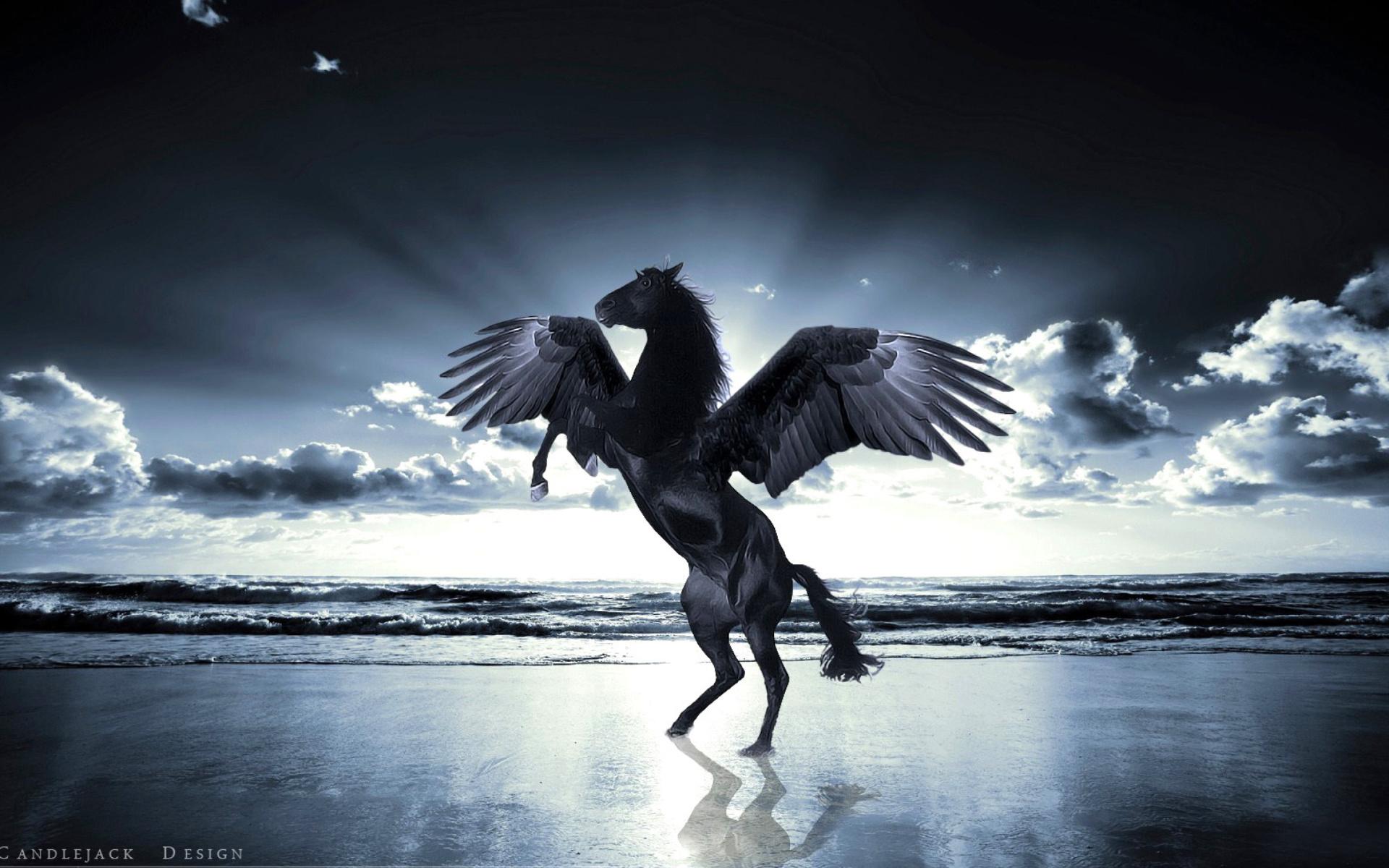 Pegasus Fondos De Pantalla Gratis Para Widescreen