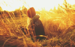 Girl In Red Hat In Field Of Gold Picture for Android, iPhone and iPad