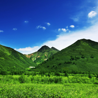 Green Hills - Obrázkek zdarma pro iPad mini