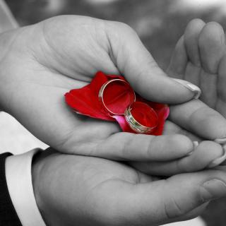 Engagement Rings - Obrázkek zdarma pro iPad Air