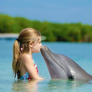 Girl and dolphin kiss - Obrázkek zdarma pro 1024x1024