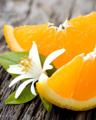 Orange Slices - Obrázkek zdarma pro Nokia Lumia 625