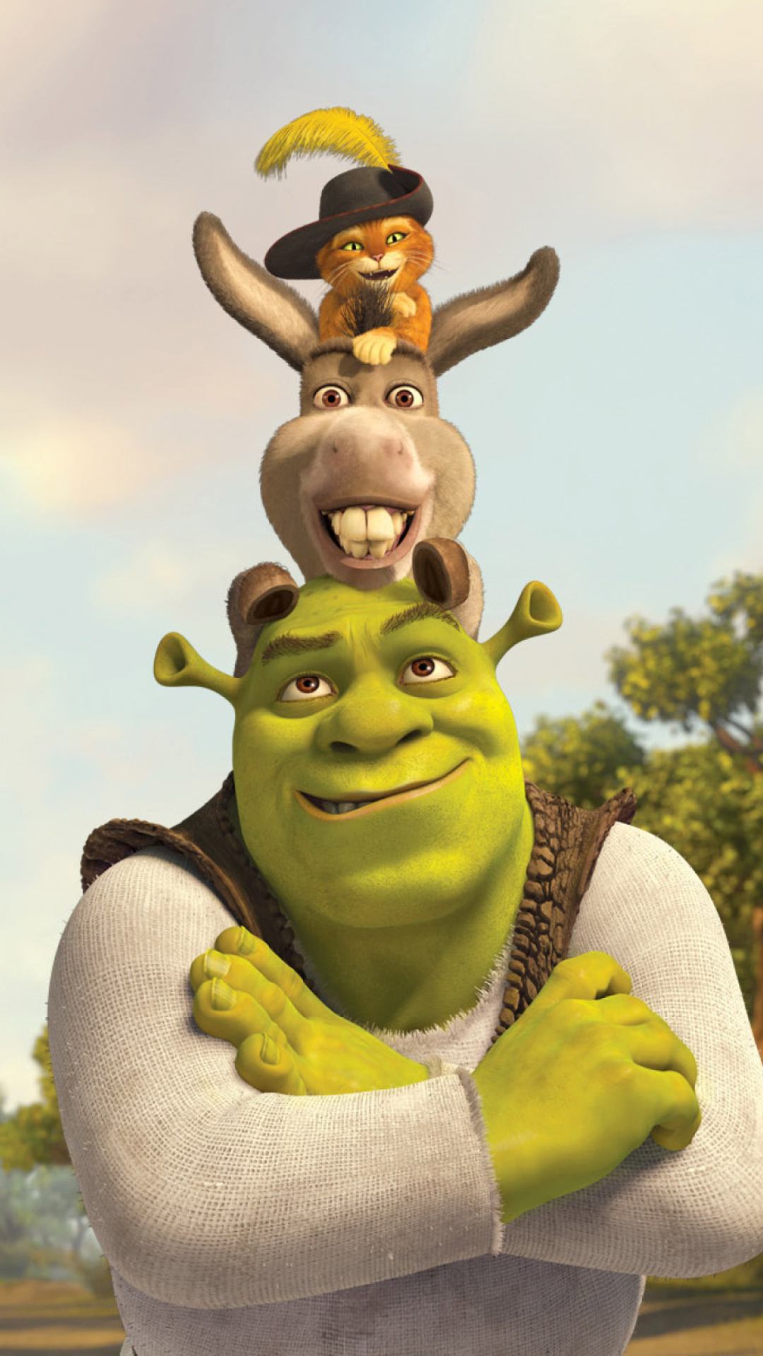 Shrek Donkey Puss In Boots Wallpaper for 1080x1920 Field Of Daisies