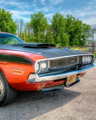 Dodge Challenger 1970 - Obrázkek zdarma pro 640x960