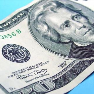Twenty Dolars - Obrázkek zdarma pro iPad