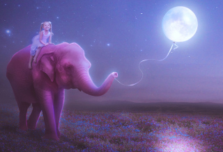 Child And Elephant Background for Android, iPhone and iPad