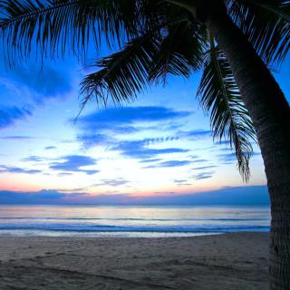 Caribbean Beach - Obrázkek zdarma pro iPad Air