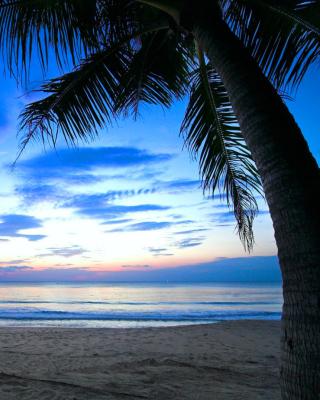 Caribbean Beach - Obrázkek zdarma pro Nokia X1-00