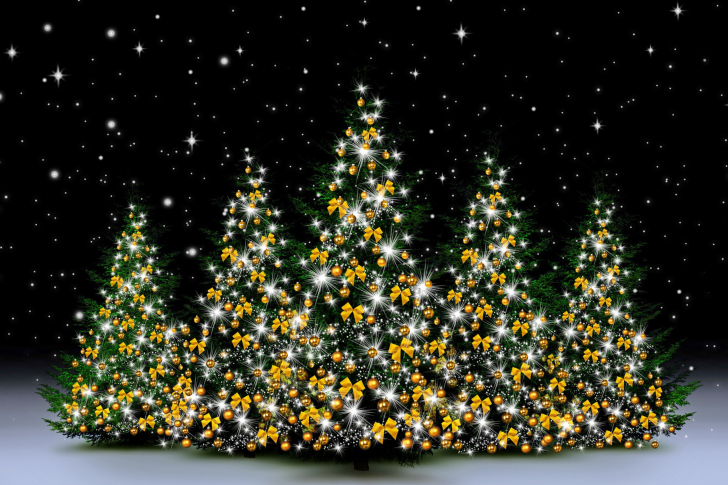 Christmas Trees in Light wallpaper